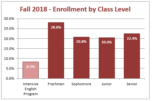 Fall 2018 - Enrollment by Class Level